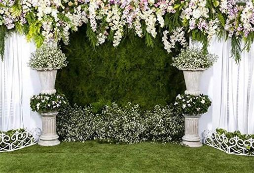 Hintergrund Garten